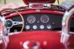 american-cars-mania-2014-milicz-10