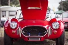 american-cars-mania-2014-milicz-11