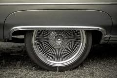 american-cars-mania-2014-milicz-14