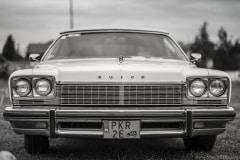 american-cars-mania-2014-milicz-17