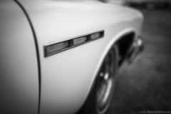 american-cars-mania-2014-milicz-19