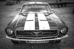 american-cars-mania-2014-milicz-37