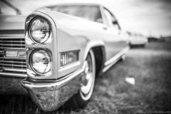 american-cars-mania-2014-milicz-42