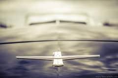 american-cars-mania-2014-milicz-50