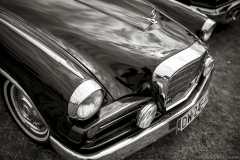 american-cars-mania-2014-milicz-51