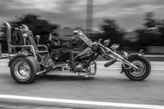 american-cars-mania-2014-milicz-55