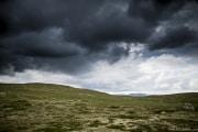 073 Norwegia Hardangervidda