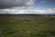 184 Norwegia Hardangervidda