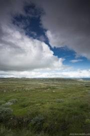 186 Norwegia Hardangervidda