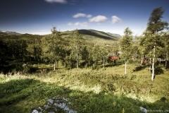 005 Norwegia Billa Bu