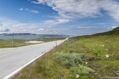 058 Norwegia Hardangervidda