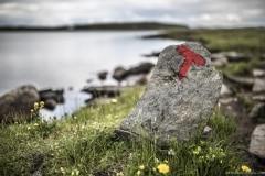 072 Norwegia Hardangervidda