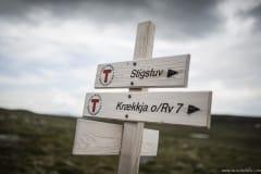 074 Norwegia Hardangervidda