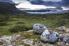 154 Norwegia Hardangervidda