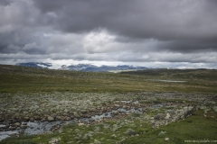 188 Norwegia Hardangervidda