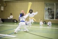Mistrzostwa Polskiej Ferderacji Taekwon-Do (12)