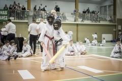 Mistrzostwa Polskiej Ferderacji Taekwon-Do (29)