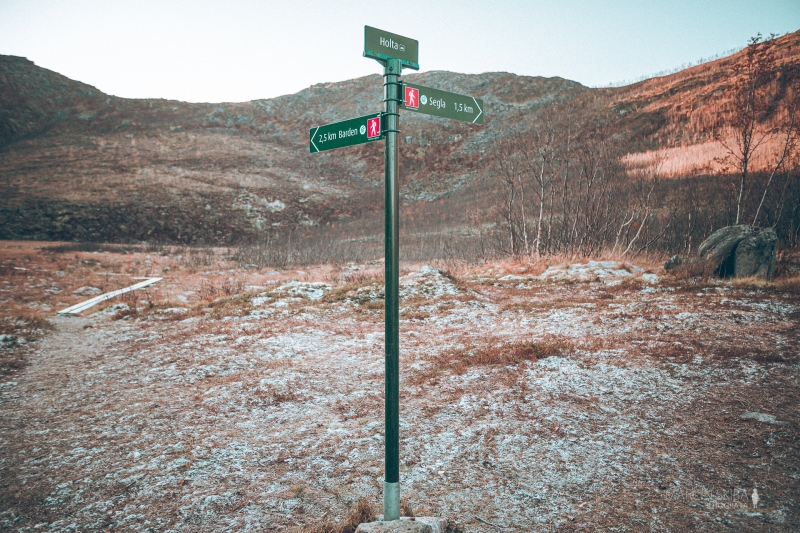 Tromso-Senja-Segla-Aurora-Borealis-152