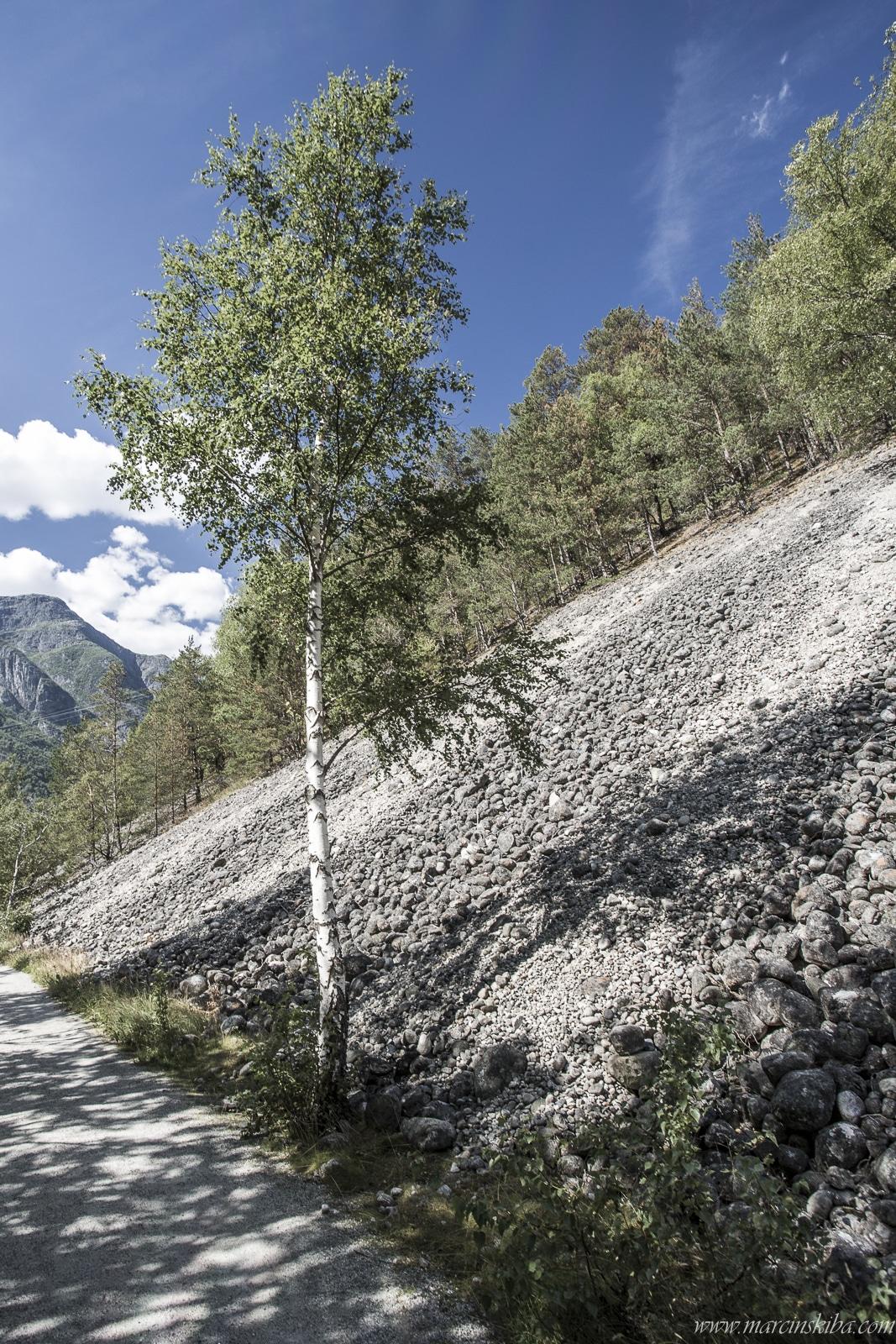 010 Norwegia Eidfjord Eidfjordvatnet