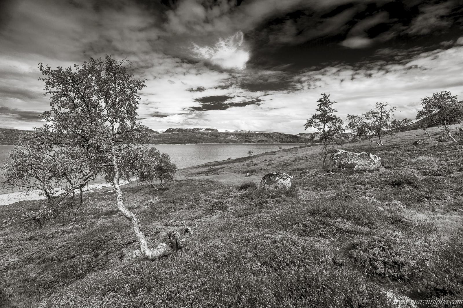 050 Norwegia Sysendammen