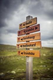070 Norwegia Hardangervidda
