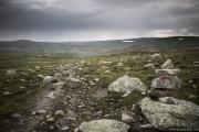 075 Norwegia Hardangervidda