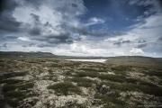 076 Norwegia Hardangervidda