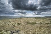078 Norwegia Hardangervidda