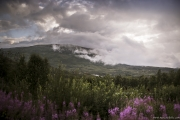 128 Norwegia Hardangervidda Liseth
