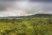 152 Norwegia Hardangervidda