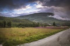 131 Norwegia Hardangervidda Liseth