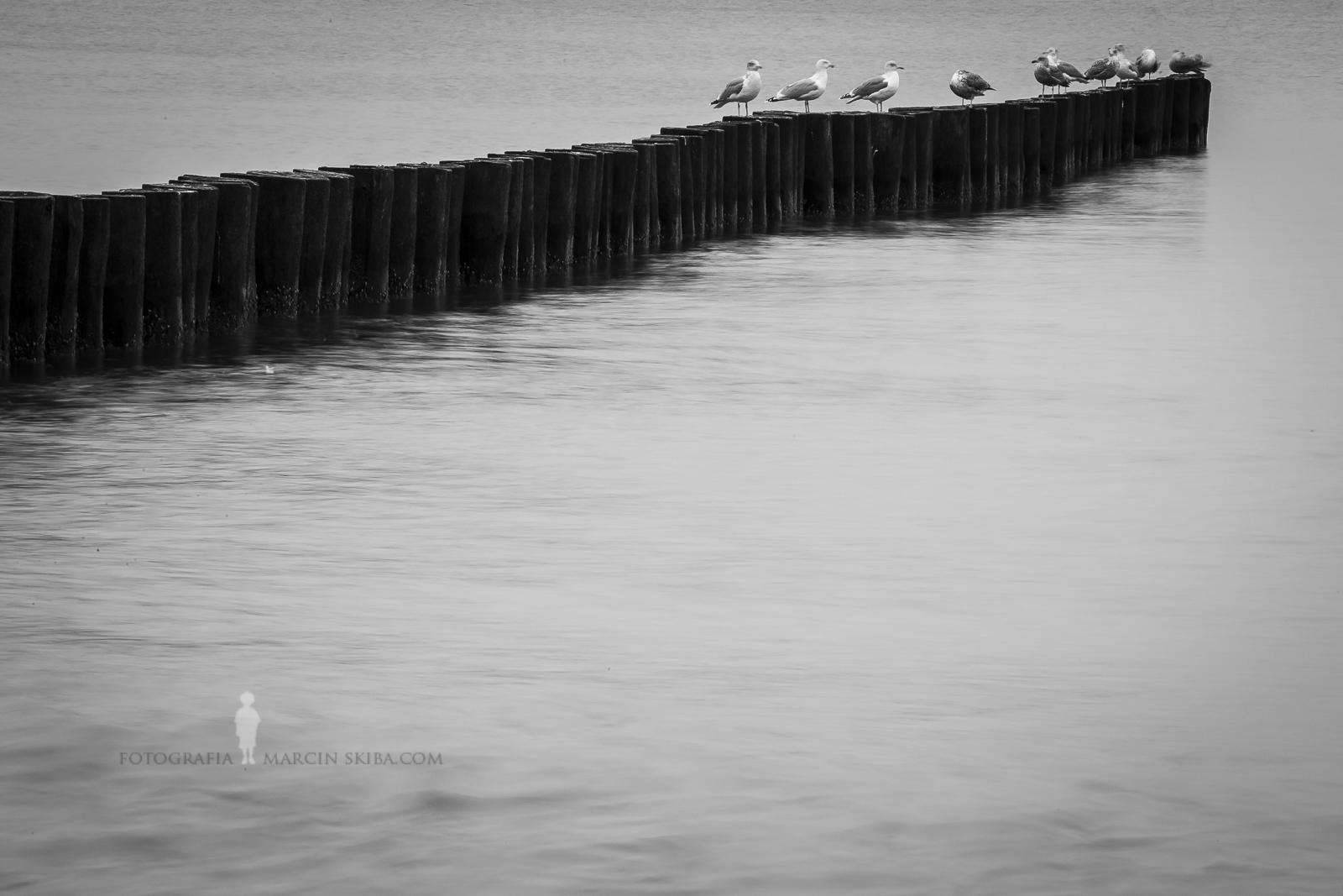 Bałtyk-Morze-Bałtyckie-Ustronie-Morskie-17