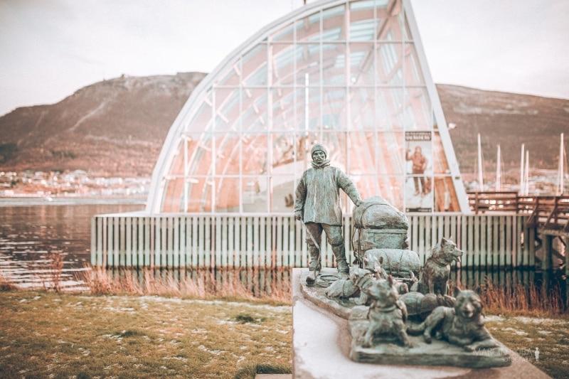 Tromso-Senja-Segla-Aurora-Borealis-135