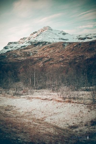 Tromso-Senja-Segla-Aurora-Borealis-146