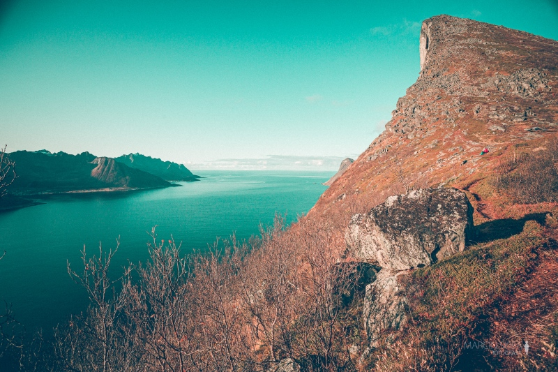 Tromso-Senja-Segla-Aurora-Borealis-156