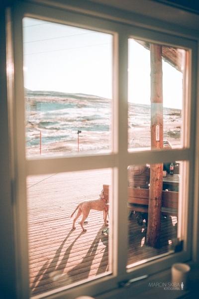 Tromso-Senja-Segla-Aurora-Borealis-46